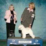 Saginaw Valley Kennel Club